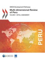 Multi-dimensional Review of Peru