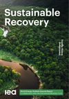 image of Sustainable Recovery