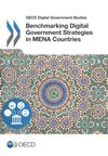 image of Benchmarking Digital Government Strategies in MENA Countries