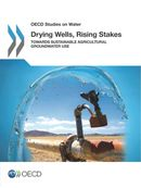 Drying Wells, Rising Stakes: Towards Sustainable Agricultural Groundwater Use