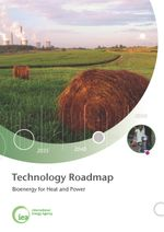 IEA Technology Roadmaps: Bioenergy for Heat and Power