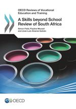 A Skills beyond School Review of South Africa
