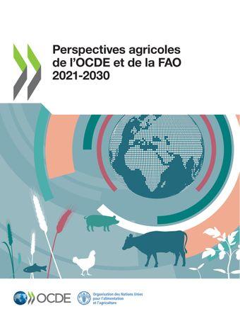 Cliquez pour accéder à la publication - Perspectives agricoles de l'OCDE et de la FAO 2021-2030